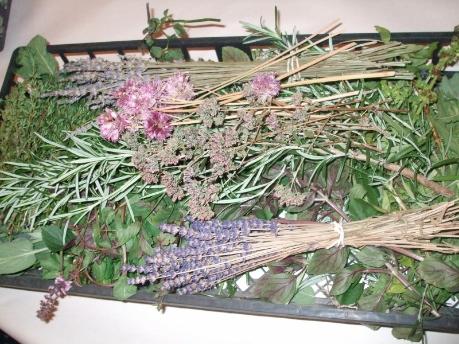 Home Foot Treatment Herbs