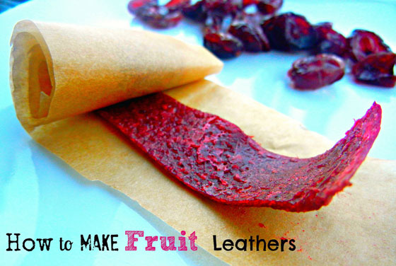 Fruit Leathers!