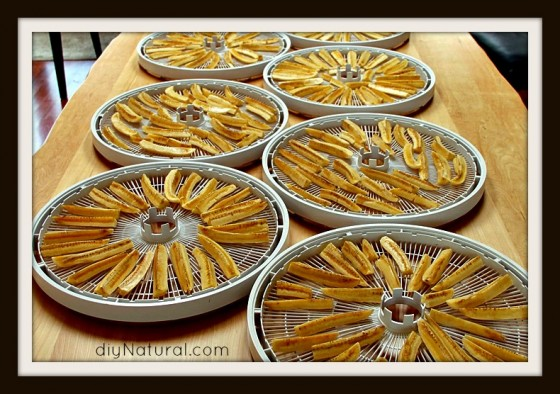 Dehydrating food 2