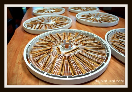 Dehydrating food 3