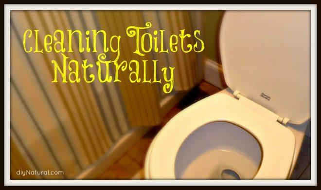 Homemade Toilet Bowl Cleaner: 3 Natural