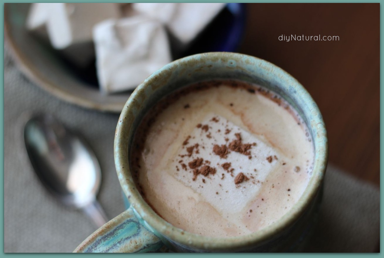 Homemade Hot Chocolate: A Naturally Sweetened Hot Cocoa Recipe