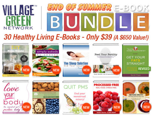 2013 VGN Summer Ebook Bundle