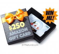 GIVEAWAY: Win a $250 Amazon Gift Card!