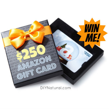 $250 Amazon Gift Card sq