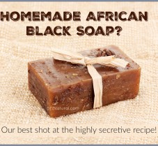 DIY Nutrient Rich Soap: Like African Black Soap