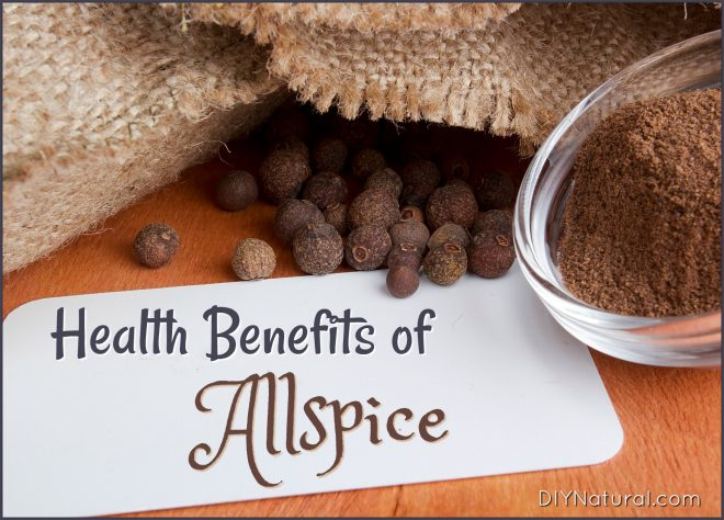 Allspice Benefits