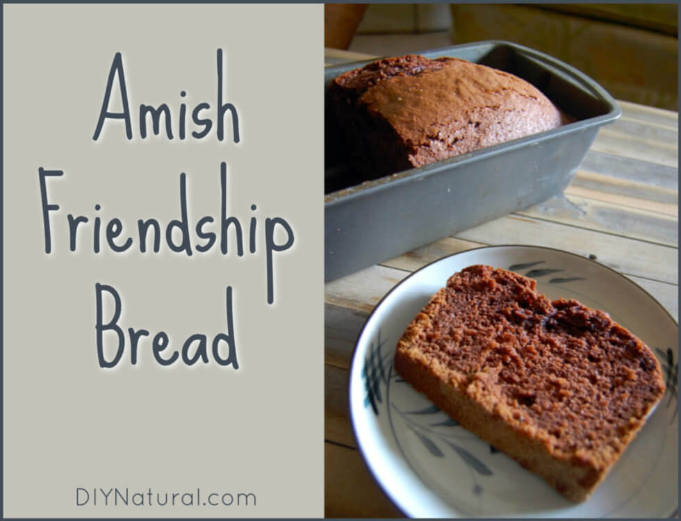 Learn to Make Your Own Amish Friendship Bread!
