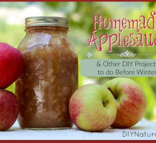 Applesauce & Other DIY Projects to do Before Winter