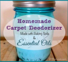 Homemade Carpet Deodorizer with Essential Oils