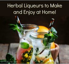 DIY Herbal Liqueurs You Can Make & Enjoy at Home