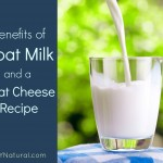 The Benefits of Goat Milk & A Goat Cheese Recipe