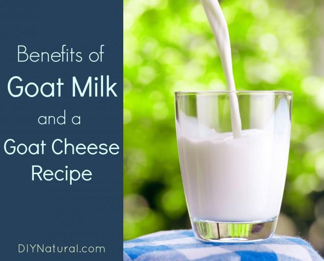 Benefits of Goat Milk