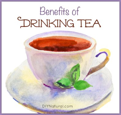 Benefits of Tea