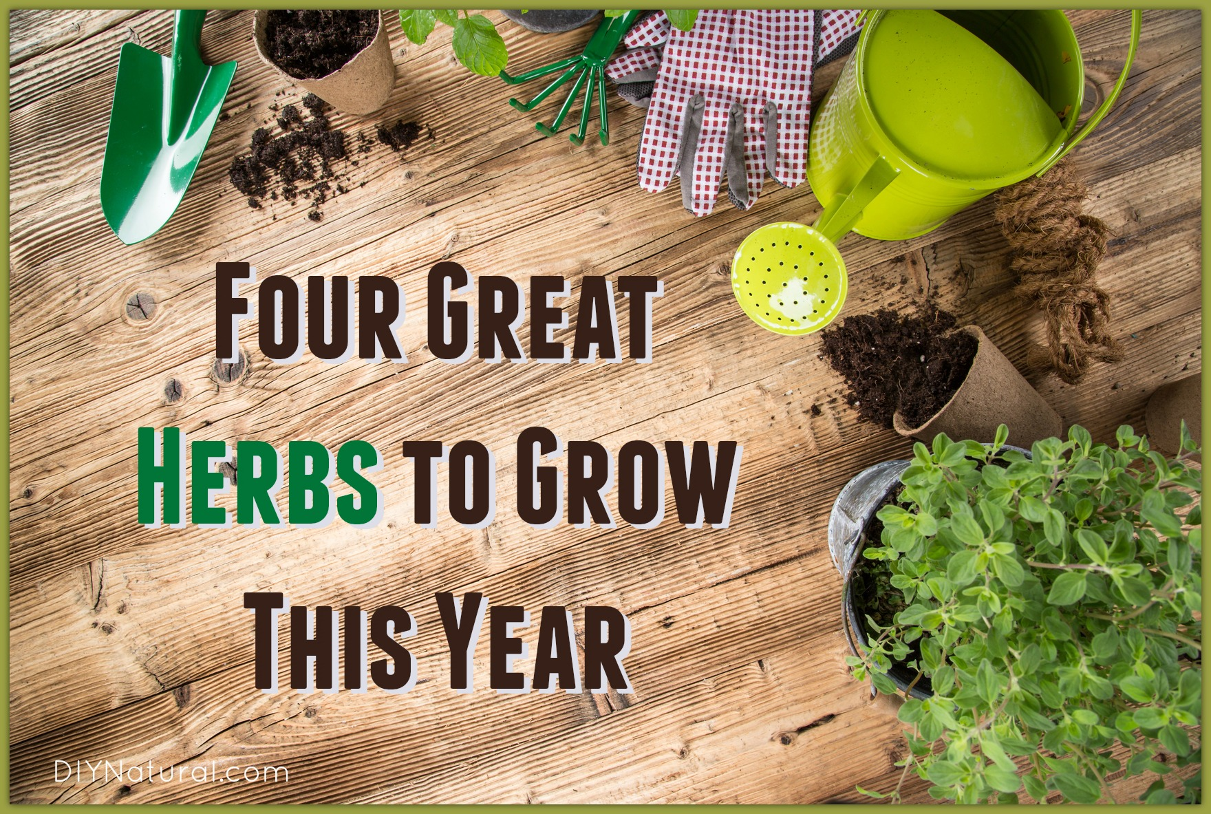 how to grow breasts naturally with herbs