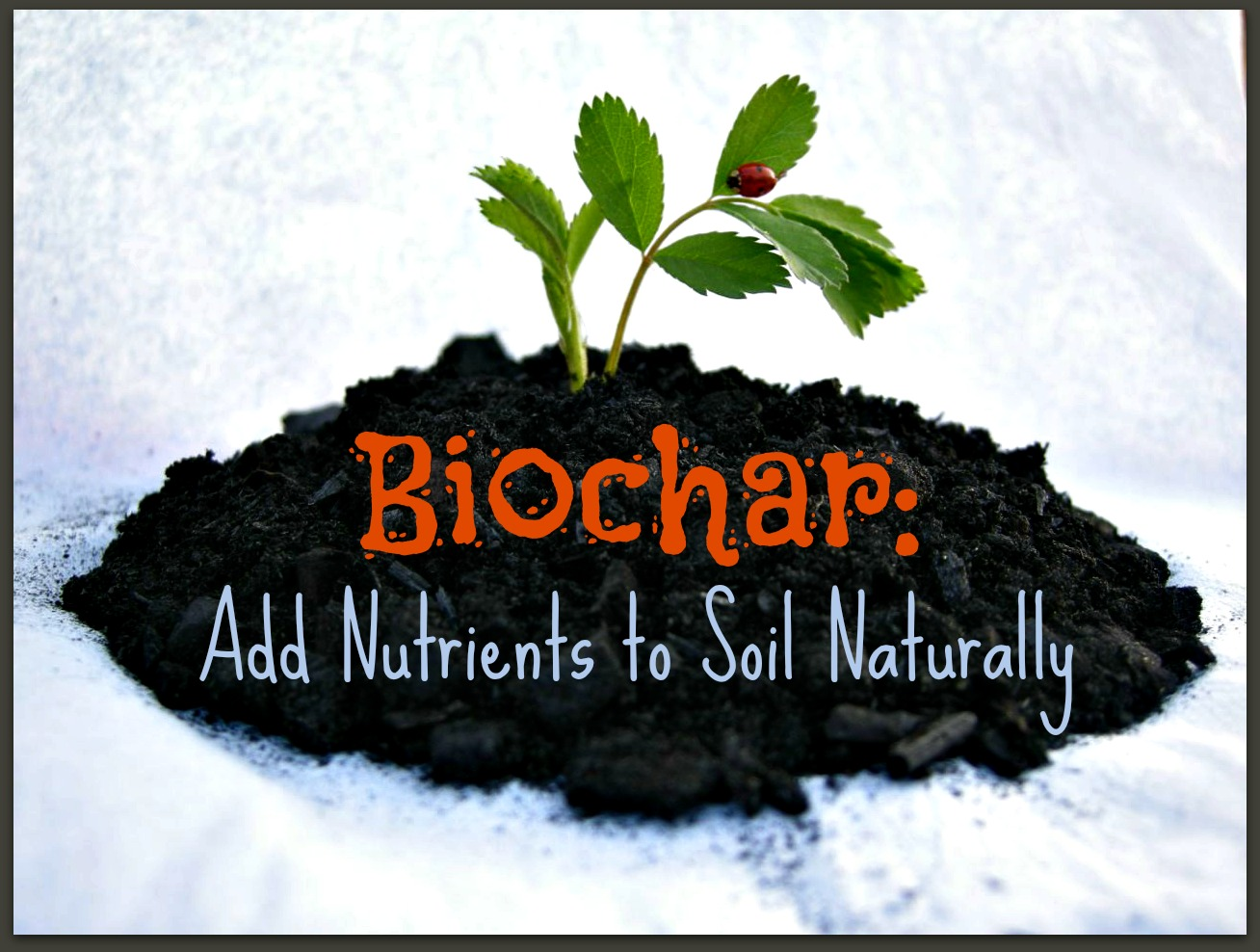 how to naturally add nutrients to soil