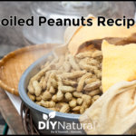 Boiled Peanuts Recipe