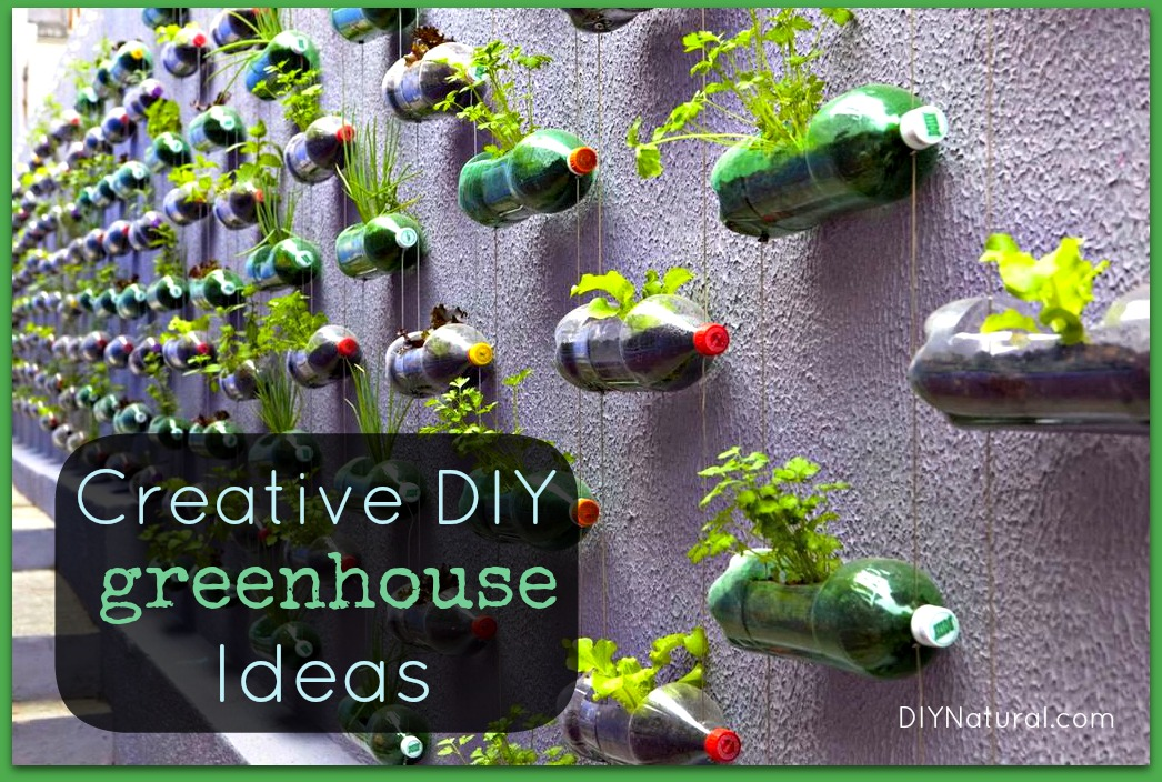 Bottle Greenhouse and Other Creative DIY Greenhouse Ideas