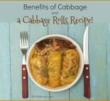 Benefits of Cabbage and a Cabbage Rolls Recipe
