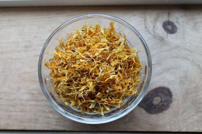 Herbs For Pregnancy Calendula