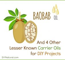 Five Lesser Known Carrier Oils and How to Use Them