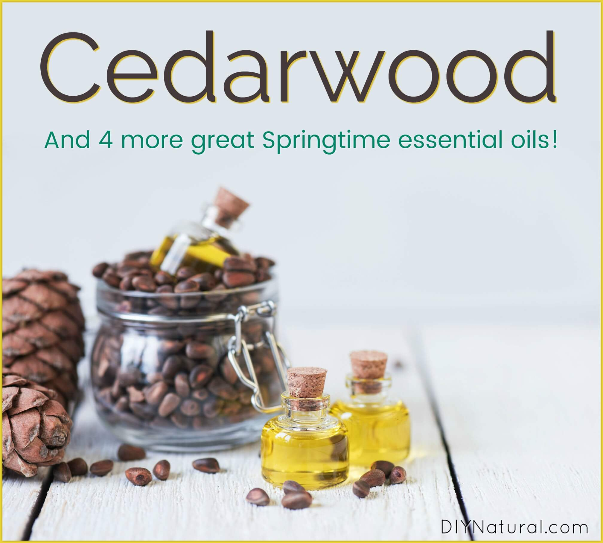 Cedarwood Essential Oil 4 Other Essential Oils For Spring Diy Projects
