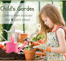Children's Garden Ideas and How to Get Kids Involved