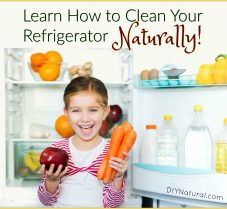 Learn How To Clean Your Refrigerator Naturally!