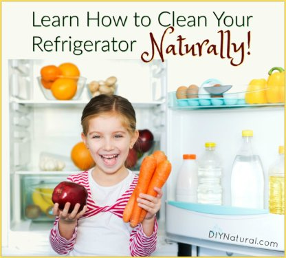 Clean Refrigerator Naturally