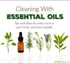 10 Ways to Use Essential Oils for Cleaning Your Home