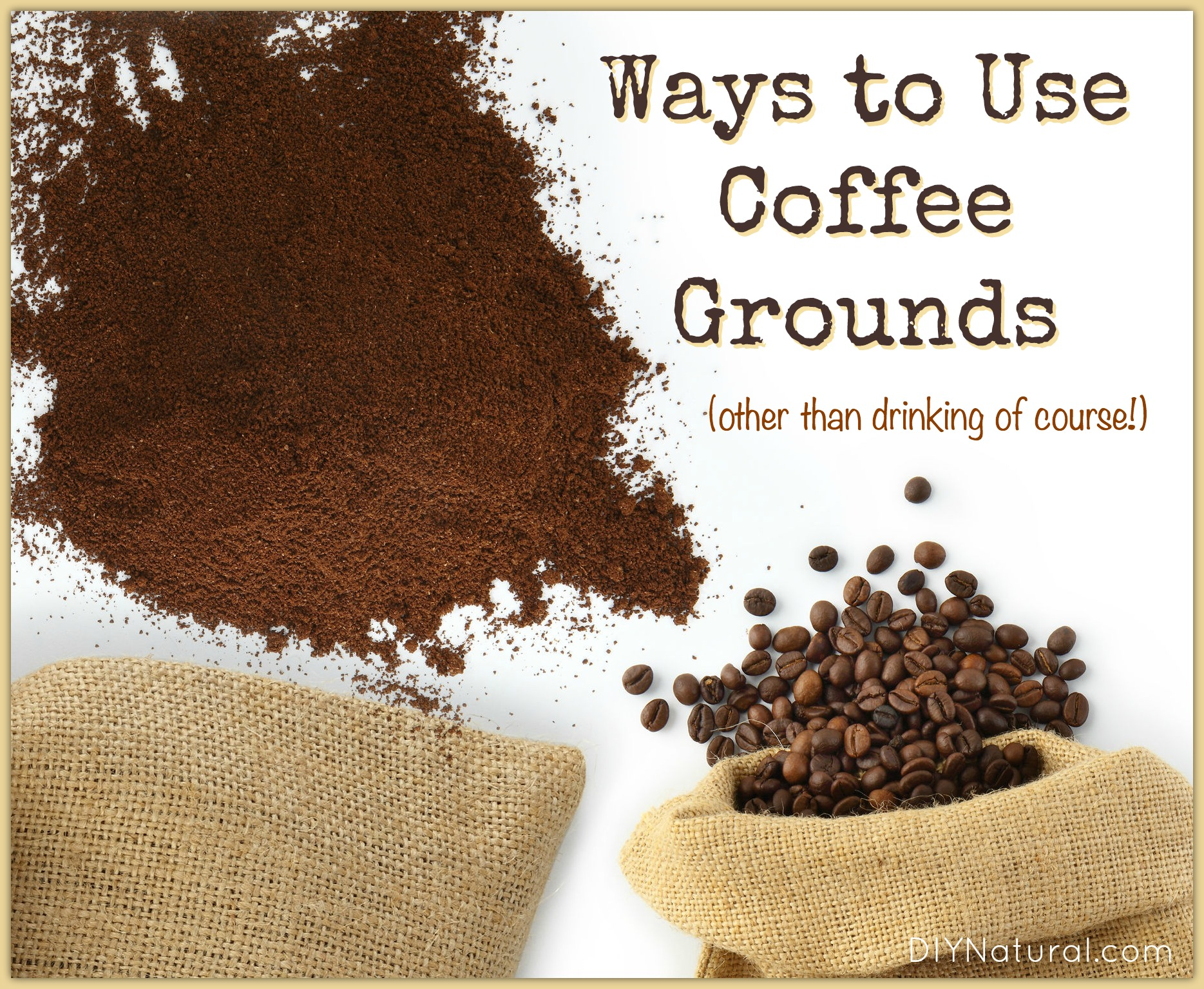 Coffee grounds interesting ways to use coffee grounds for How to use coffee grounds in garden