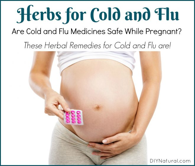 Cold Medicine While Pregnant Flu Herbs