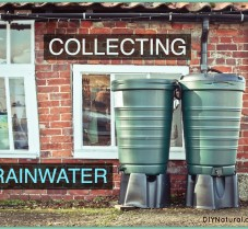 Collecting Rainwater in DIY or Commercial Barrels