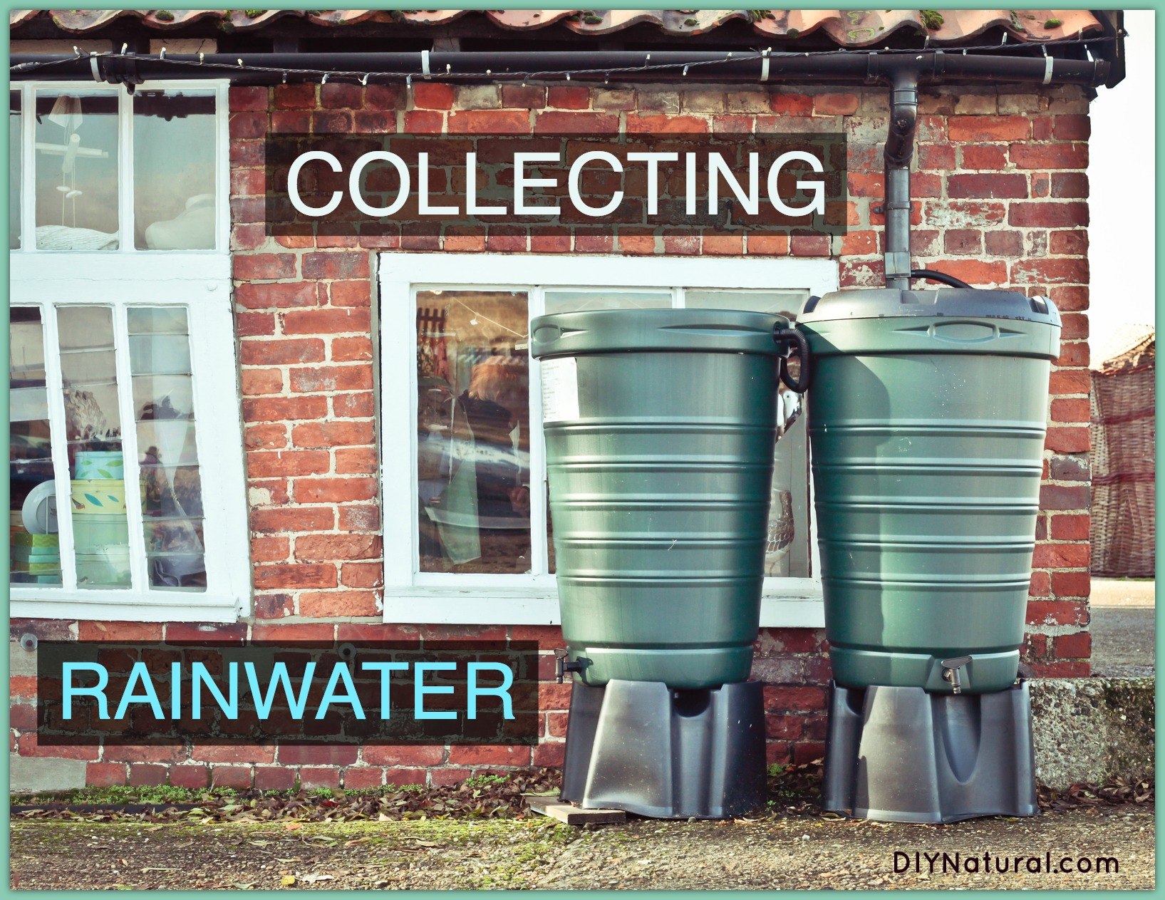 Collecting Rain Water 61
