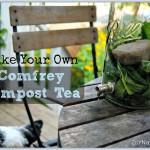 A Compost Tea Recipe Made with Wild Comfrey Herb