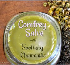 A DIY Comfrey Salve Recipe for Sunburns and More