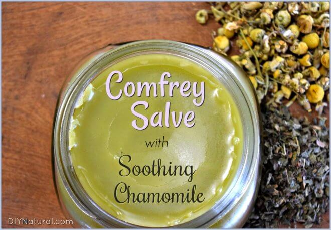Comfrey Salve with Chamomile