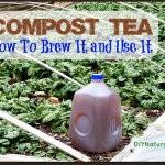 The Secrets to Making Great Compost Tea