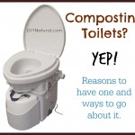 How To Build a Natural Composting Toilet, or buy one