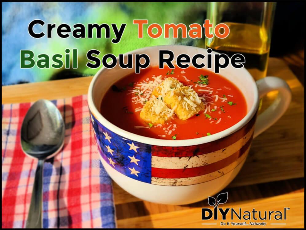 Creamy Tomato Soup Recipe Basil