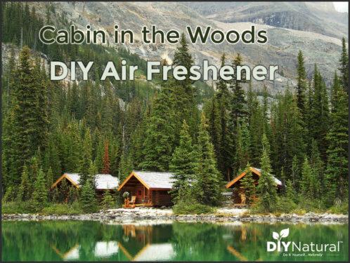 DIY Air Freshener Cabin in Woods