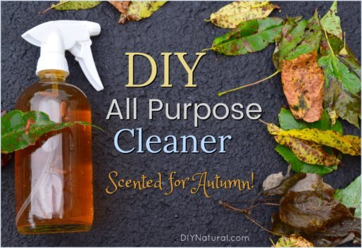 DIY All Purpose Cleaner Fall