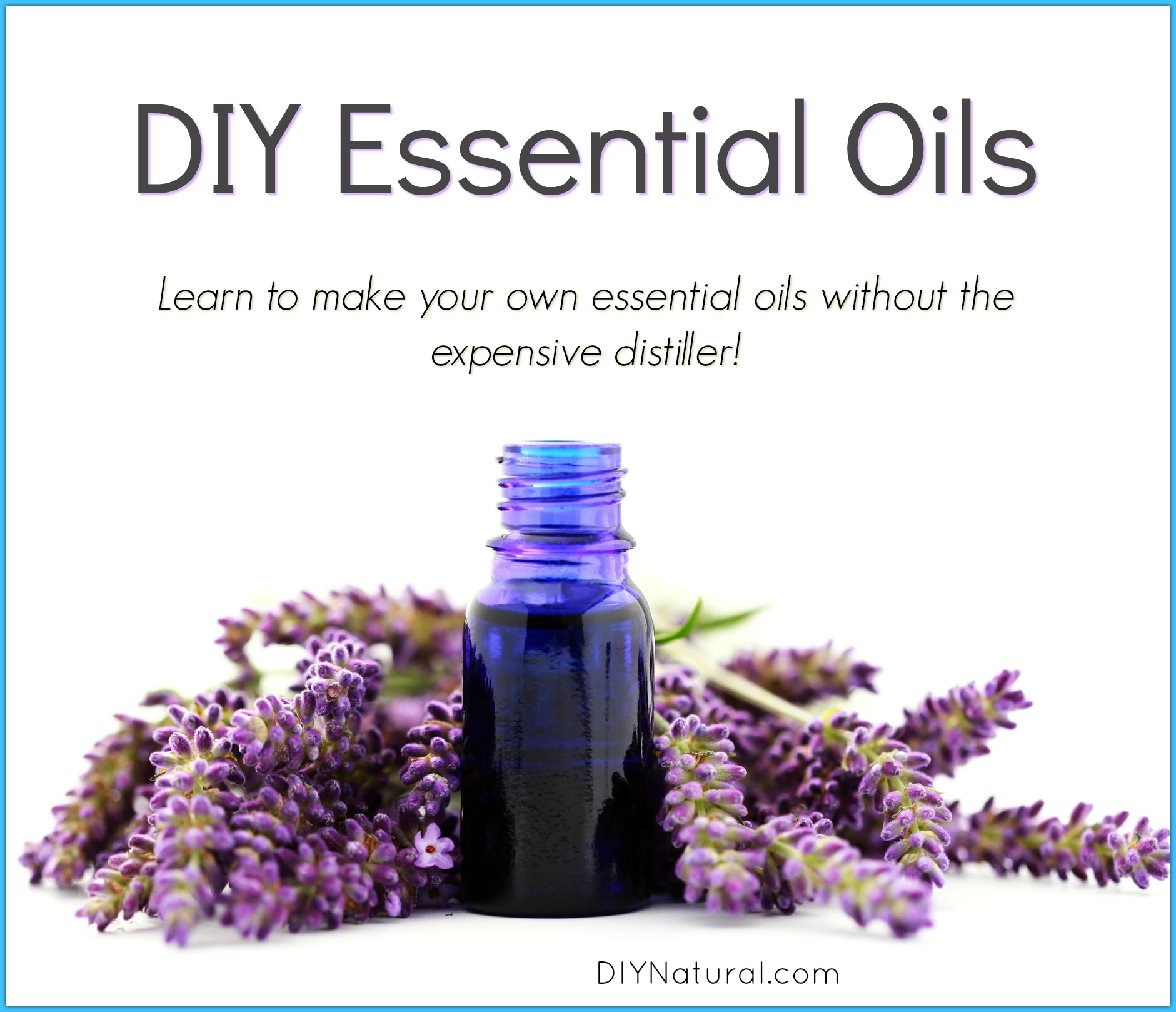 Diy Essential Oils Learn How To Make Your Own Essential Oils