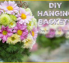 How To Create Beautiful DIY Hanging Baskets