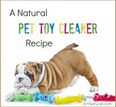 A Natural Cleaner Recipe for Cleaning Your Pet's Toys