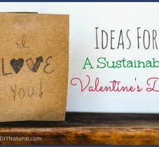 Ideas For A Green & Sustainable DIY Valentine's Day
