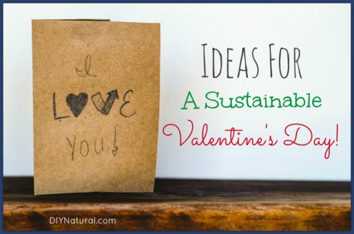 DIY Valentines Day