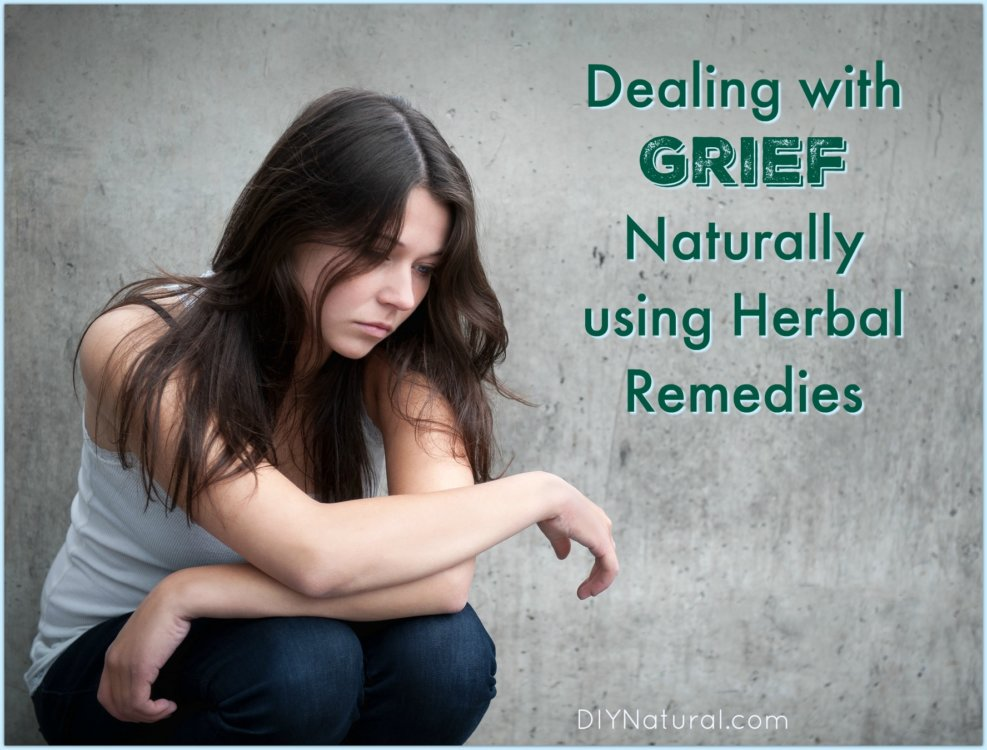 """dealing with grief essay Introduction to grief and bereavement issues kathryn patricelli, ma while it is true that people require air, food, water, clothing, and shelter,"""" in order to survive, we must also add relationships to this list because it is a rare person who is able to thrive in the absence of intimate relationships with other people, places, and things."""