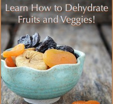 Methods for Drying (Dehydrating) Fruits and Veggies