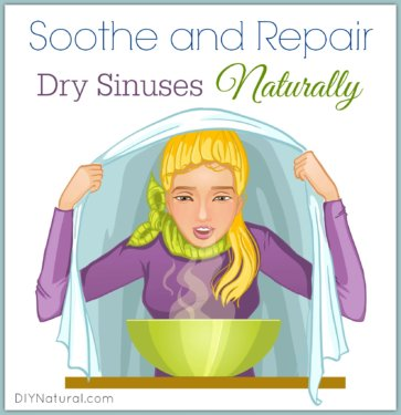 Dry Nose Dry Sinuses